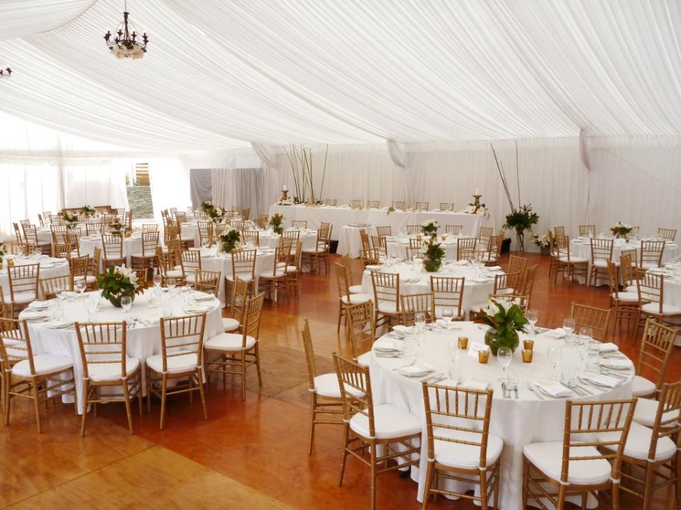 Party plus queenstown wedding association gallery gallery gallery gallery junglespirit Images